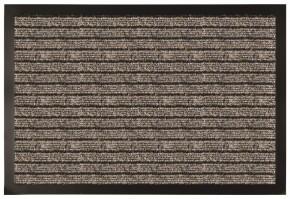 Čisticí rohožka RPP15 (50x80 cm)