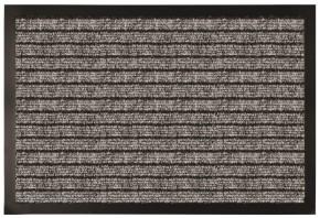 Čisticí rohožka RPP16 (50x80 cm)