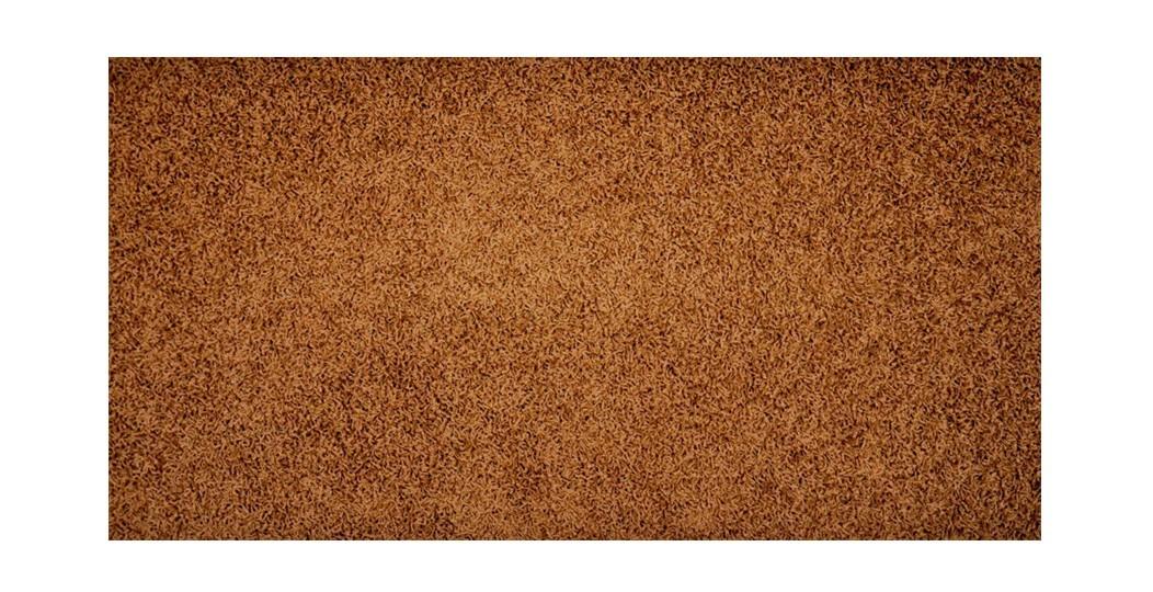Elite Shaggy - koberec, 200x140cm (100%PP shaggy, hnědá)