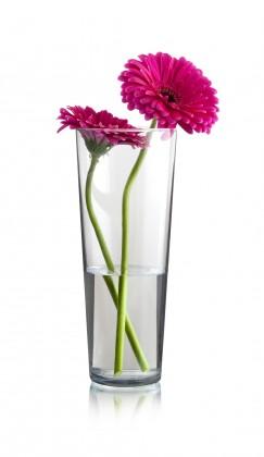 Flora - Váza kónická, 26 cm (sklo čiré)