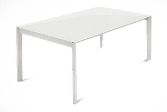 Jídelní stůl Web - 140 cm (kostra masiv textura bílá/deska leptané sklo bílé)