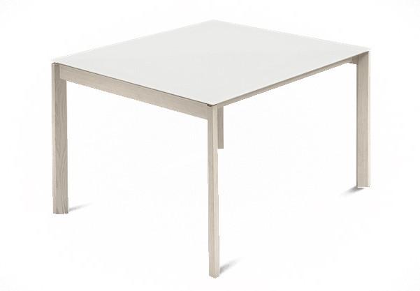 Jídelní stůl Web - 90 cm (kostra masiv jasan/deska leptané sklo bílé)