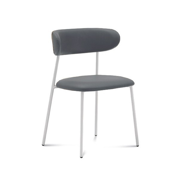 Jídelní židle Anais - Jídelní židle (lak bílý matný, eko kůže šedá)