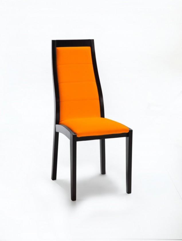 Jídelní židle Floreana (černá / látka carabu oranžová)