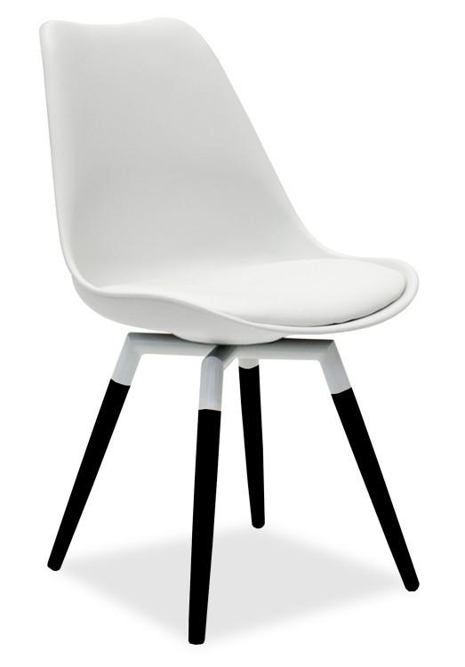 Jídelní židle GINA 9301-801+FIDO 9315-424 (bílá,černá)
