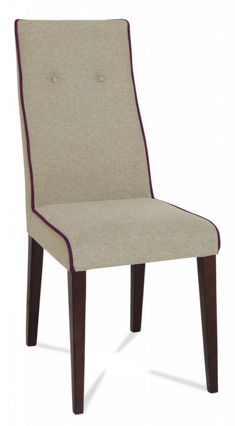 Jídelní židle Kanita (wenge/látka carabu šedá/linka fialová)