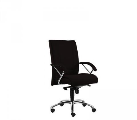 kancelářská židle Demos Prof - Kancelářská židle s područkami (alcatraz 17)