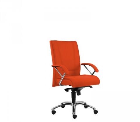 kancelářská židle Demos Prof - Kancelářská židle s područkami (alcatraz 46)