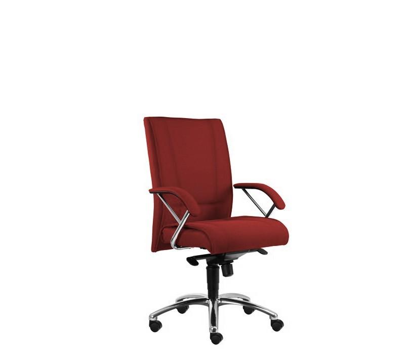 kancelářská židle Demos Prof - Kancelářská židle s područkami (alcatraz 5)