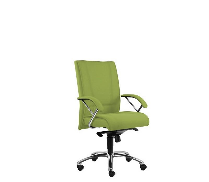 kancelářská židle Demos Prof - Kancelářská židle s područkami (alcatraz 848)