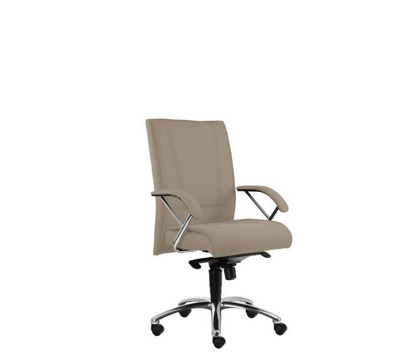 kancelářská židle Demos Prof - Kancelářská židle s područkami (suedine 109)