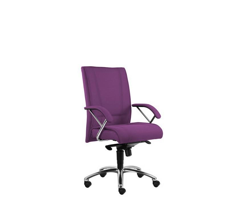kancelářská židle Demos Prof - Kancelářská židle s područkami (suedine 22)