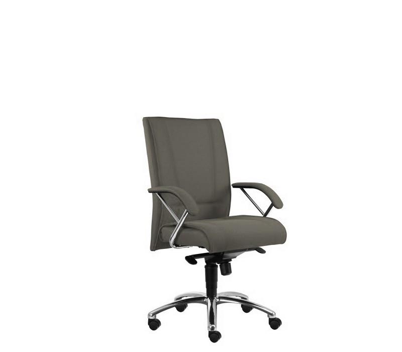 kancelářská židle Demos Prof - Kancelářská židle s područkami (suedine 24)
