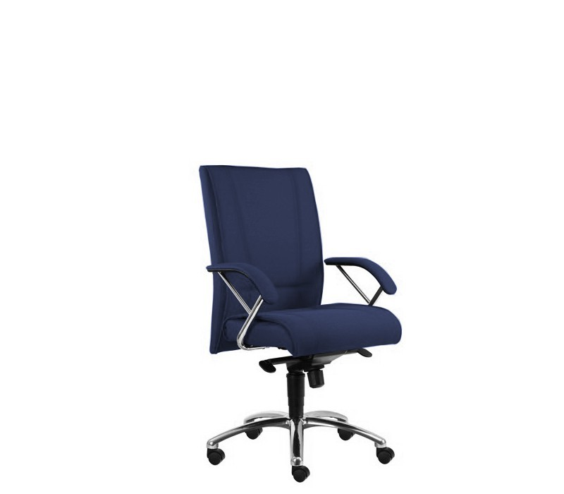 kancelářská židle Demos Prof - Kancelářská židle s područkami (suedine 9)