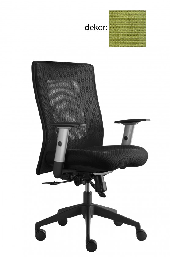 kancelářská židle Lexa (pola 492, sk.4)