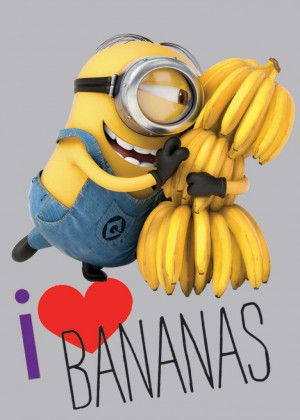 Koberec - Disney Despicable Me-01 Love Bananas, 95x133cm (šedá)