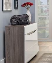 Leone - Komoda 90x85x41 cm (dub trufel, bílá lesk)