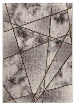 Moderní koberce Kusový koberec Dalibor 31 (120x170 cm)