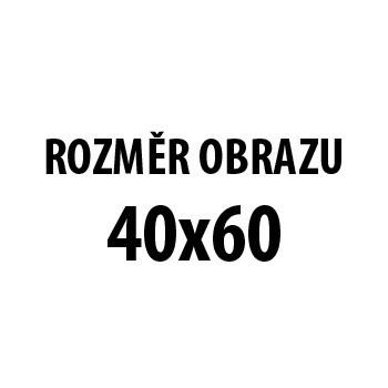 Obraz AR 173, 40x60 cm (fototisk na plátně)