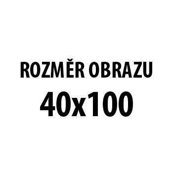 Obraz AR 178 CB, 40x100 cm (fototisk na plátně)
