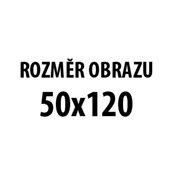 Obraz AR 207, 50x120 cm (fototisk na plátně)