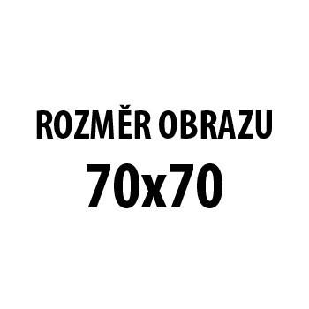 Obraz AR 210, 70x70 cm (fototisk na plátně)