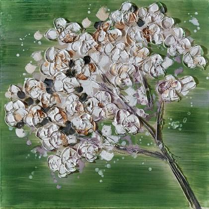 Obraz Flowers Z351, 60x60 cm (květy)