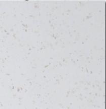Pracovní deska Minimax PD 210 - 210x60 cm (tropica beige)