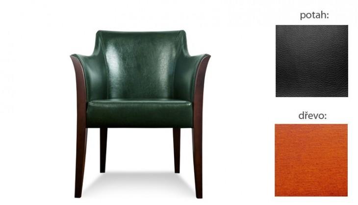 Samostatné křeslo Bari - Křeslo (extra leather black / dřevo č. 3)