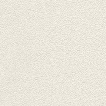 Samostatné křeslo Enjoy - Křeslo, kůže, dřevěné nohy (naturelle D 11071 white)