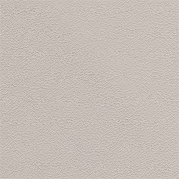 Samostatné křeslo Enjoy - Křeslo, kůže, dřevěné nohy (naturelle D 11181 dove)