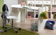 Sunny - Pracovní stůl (dub, alpská bílá)
