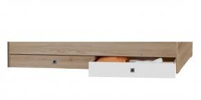 Úložný prostor pod postel Cariba (san remo dub, bílá)