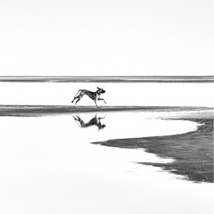 Umělecká fotografie Glossy Art GM02, 100x100 cm