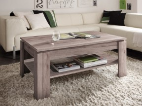 Universal - Konferenční stolek (dub san remo tmavý)